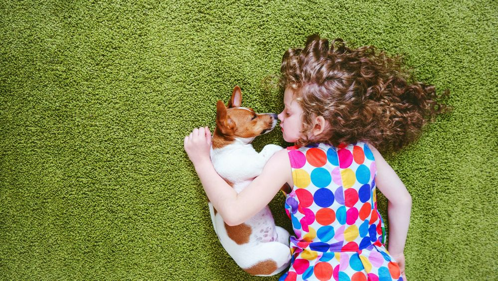 USAA Community 5 Considerations Puppy Ownership Girl.jpg